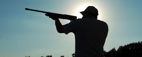 shooting_laws_main_3