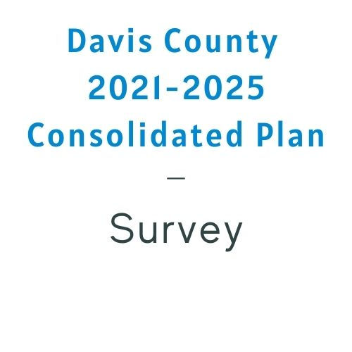 Consolidated Plan Survey